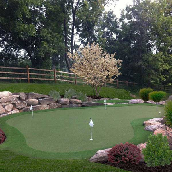 Backyard putting green in pristine lawn with rocks and fences
