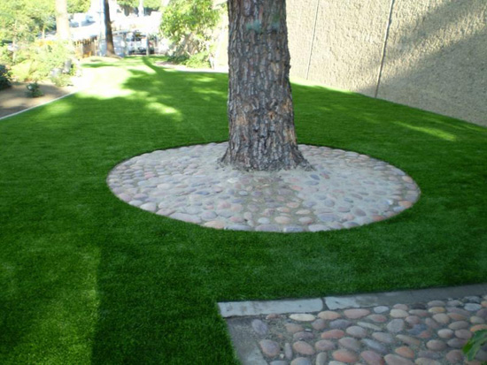 Grass cutout around tree in Philadelphia commercial park courtyard