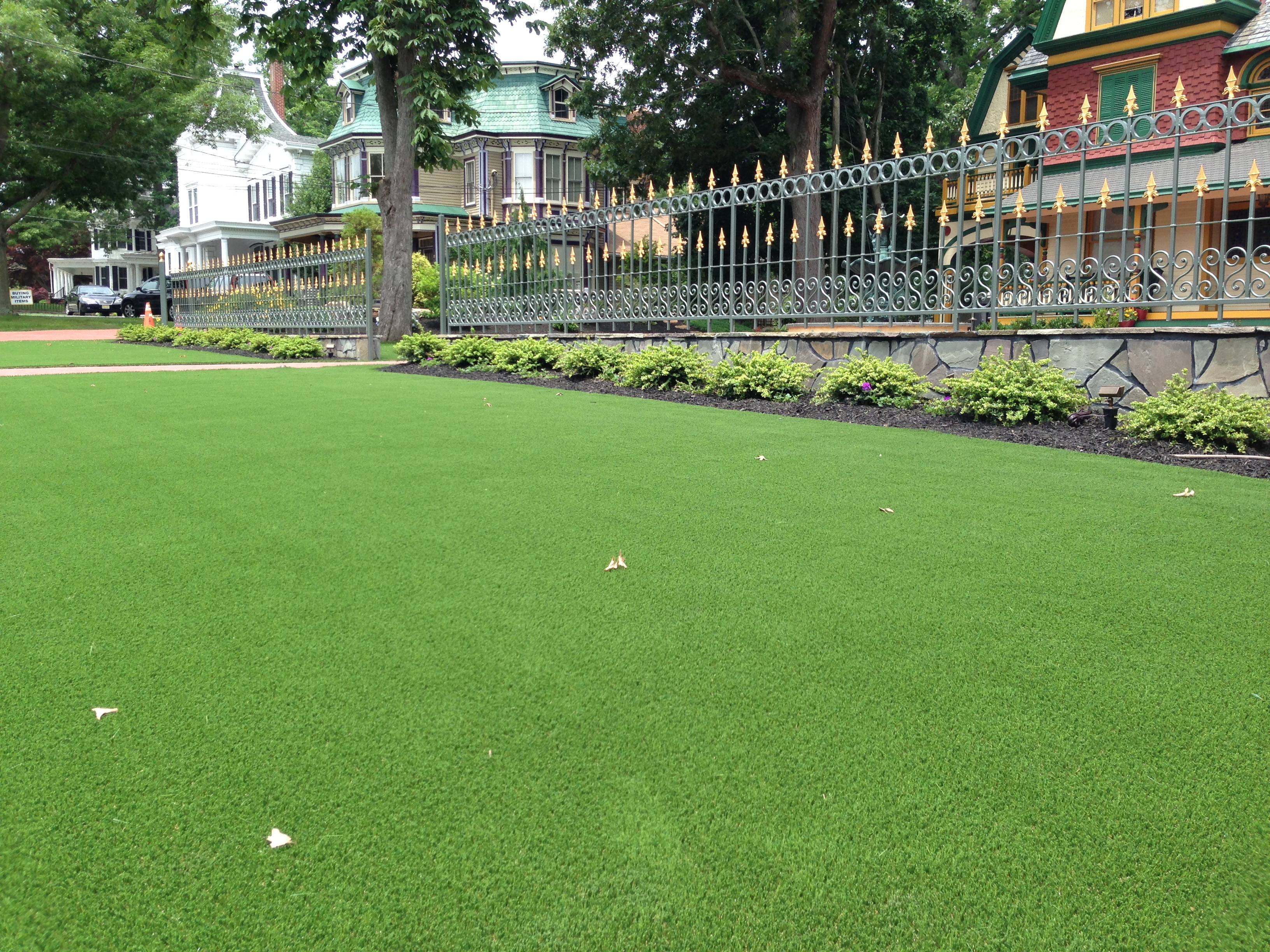 Artificial turf yards in front of Phildelphia Victorian homes