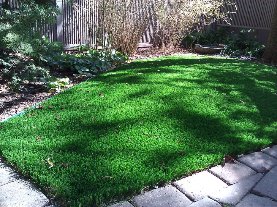 Small patch of artificial grass backyard in a garden
