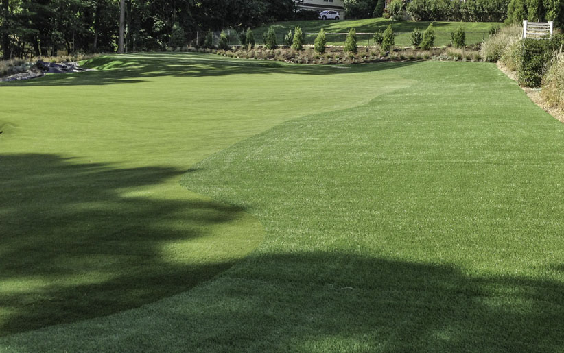 Golf fairway made from artificial turf in Philadelphia