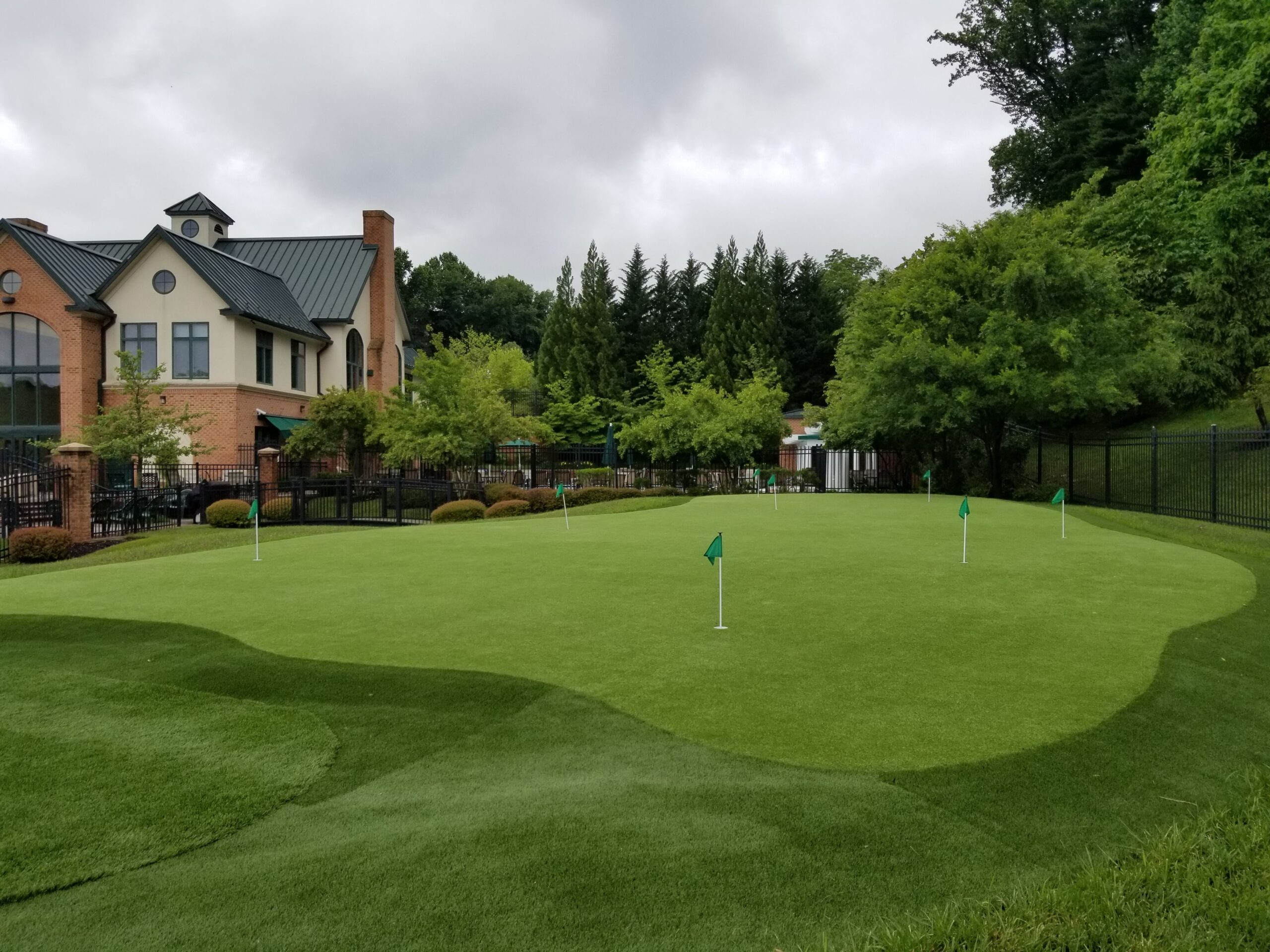 putting green grass installation